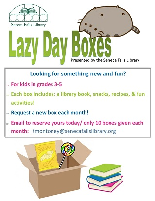 lazy day boxes
